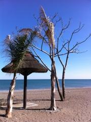 51-beach