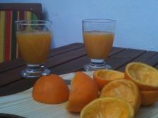 101-OrangesBreakfast