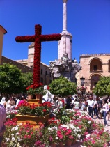 102-cruces