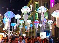 144-jellyfish